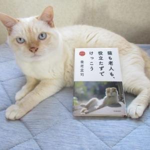 「猫も老人も、役立たずでけっこう」