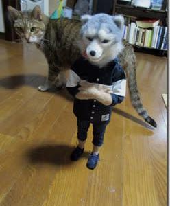 猫ときどき狼 ⑫