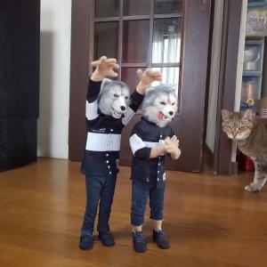 猫ときどき狼 ボイさん⑫