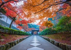京都の神さま