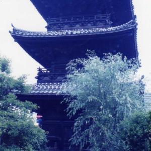 佐田岬から九州へ(1996年5月26日~6月1日)改訂版 その5