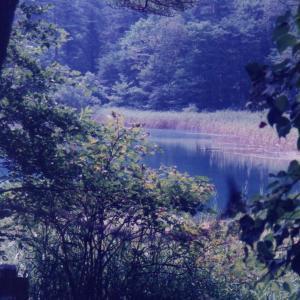 磐梯高原より日光の旅(1997年8月31日~9月5日)改訂版 その7