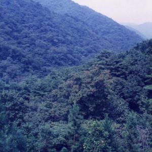 磐梯高原より日光の旅(1997年8月31日~9月5日)改訂版 その11