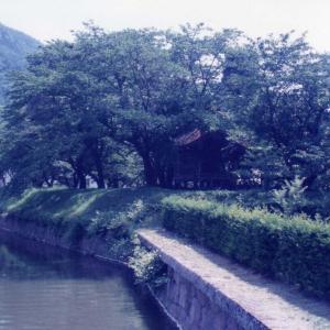 奥蓼科、伊香保、秩父の旅(1997年7月14日~7月18日)その5