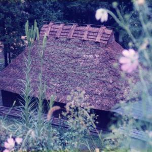 宇和島国立公園より四万十川源流への旅(1997年9月28日~10月3日)その19