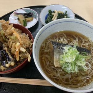 加賀市山代温泉「御食事 長岡」ランチに細切りの手打ちそばと揚げたて天ぷらのセットを食べる