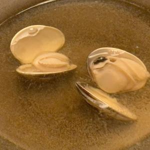 名古屋市中区錦「桑名蛤料理・蛤しゃぶしゃぶ 貝新」産地の桑名から直送の天然蛤のしゃぶしゃぶ鍋