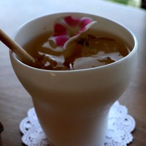 七尾能登島のイルカに会える喫茶店「海辺のカフェ 海とオルゴール」青い空と海を眺めながらのハーブティー