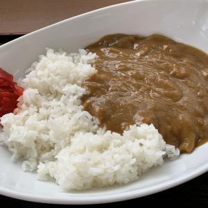 新潟から仙台への移動の途中でランチを食べた「福島松川パーキングエリア」カレーは飲み物でした