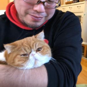 猫に癒されしおっさんの微笑み&セッション