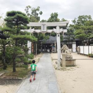 行ってきました!茅渟神社⛩