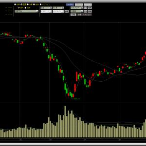 2020/06/10 アンジェス・テラ・ナノキャリア・DLE NASDAQの単位はドルじゃない件