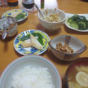 夫が作った冷凍餃子と麻婆豆腐・・・6月23日のうちごはん