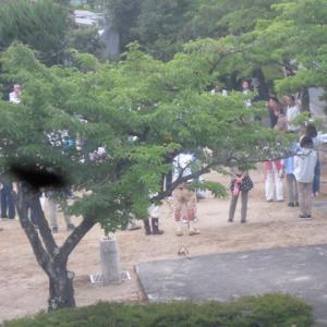 公園掃除…町内会行事