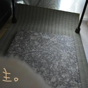 うさぎに畳、熊本産い草のスペースを