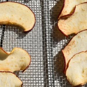 うさぎのおやつ作り「干しリンゴ」2日目