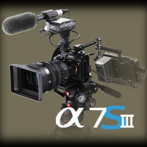 α7RIV: 慣れない動画について少々