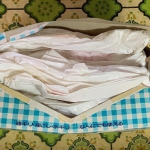 母娘で同じ!レジ袋の畳み方
