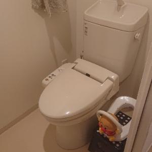 【トイレ初公開】5年ぶりにトイレの○○の断捨離