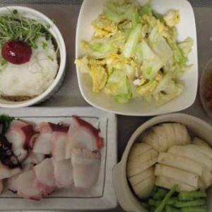 タコ刺し+生姜ポン酢=真澄ワンカップ