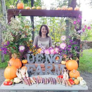 カラフルなお花たち、虹色の椅子♪そしたら、サプライズが!(北海道旭川 うえのファーム)