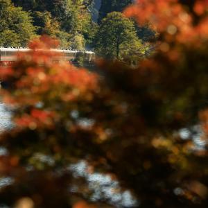 〜下原ダムの秋~