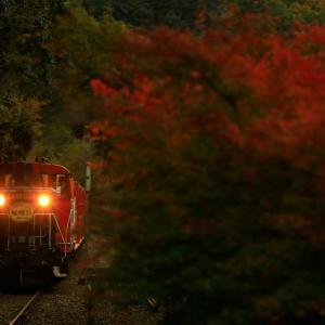 〜夏と秋の境~