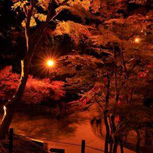 秋の夜更け