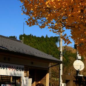 〜秋の名松線~