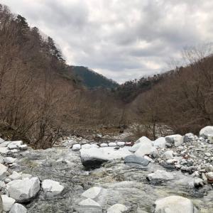 丹沢登山 西丹沢→檜洞丸
