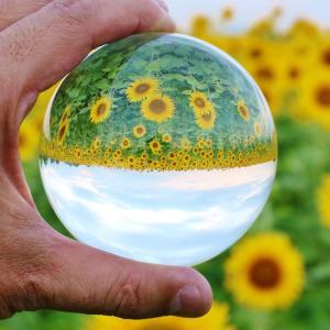 本格的な夏到来!紫外線は目からも?!~紫外線対策できる正しいサングラスの選び方~