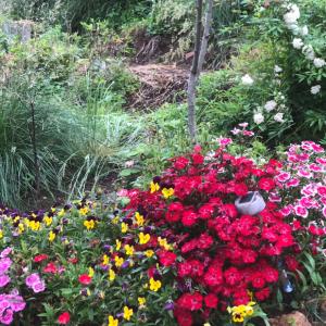 ラブの墓は花でいっぱい