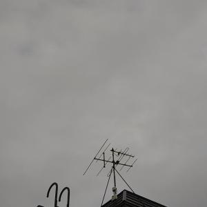 やっと雨^_________^