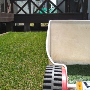 2021年度•初芝刈り(。•̀ᴗ-)✧