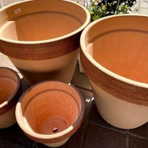 日曜日の土いじり!ガーデンカルチャー幸田のびっくり陶器市に間に合った♪