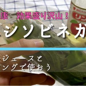 """【動画作成】最後に収穫したシソで、健康""""シソビネガー""""を作る!活用法を紹介"""