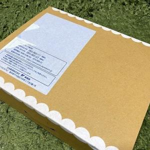 11月のマイリトルボックス♡Kanakoさんの可愛いイラストが描かれた箱Tea or Coffee ?BOX!!
