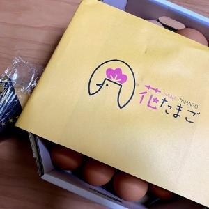 """朝採れ新鮮卵が買える""""花たまご""""へ!!卵まとめ買いとおまけのプリンも絶品だった"""