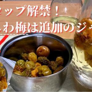 【梅シロップ解禁!】取り出したしわしわ梅で追加のジャム作り、3種の梅シロップ飲み比べ