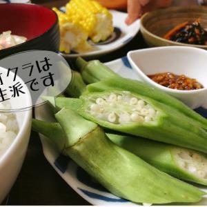 【野菜の食べ方】管理栄養士オススメ!のオクラの食べ方