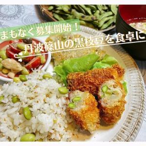 黒枝豆を収穫したその日に発送!【丹波篠山と食卓をつなぐ企画第2段!!】
