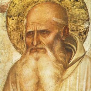 聖ロムアルド大修道院長     St. Romualdus Abbas