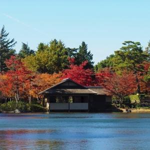 日本庭園の紅葉 2