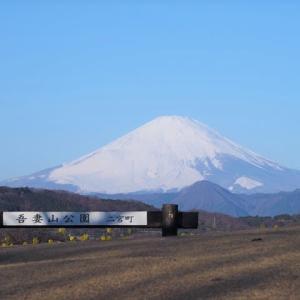 二宮 吾妻山公園、公園山頂も明るくなってきました