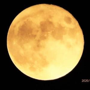 月齢14.4(満月;別名スタージャンムーン)