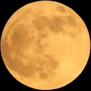 ビーバムーン 満月(月齢14.9)
