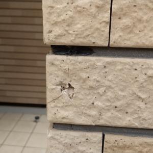 (住宅塗装) 工事中の損傷事故