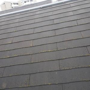 屋根塗装は、早めにね!