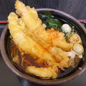 【ゆで太郎】鶏天&揚げ餅のお蕎麦580円!