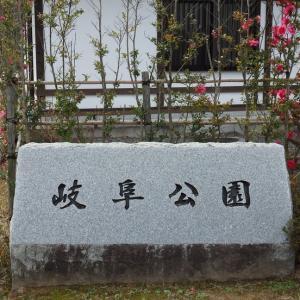 『岐阜公園の雪吊りや菰巻き風景を・・・・・』